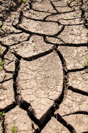 wilds: Texture, background, desert, wilderness, waste, sands, wilds, sahara. texture of dry land. Dry cracked earth background. land with dry cracked ground. Land with dry and cracked ground.