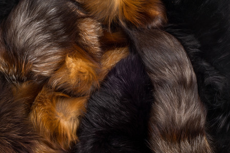 stole: Texture, background. Fur Fox. a carnivorous mammal of the dog family with a pointed muzzle and bushy tail, proverbial for its cunning. Stock Photo