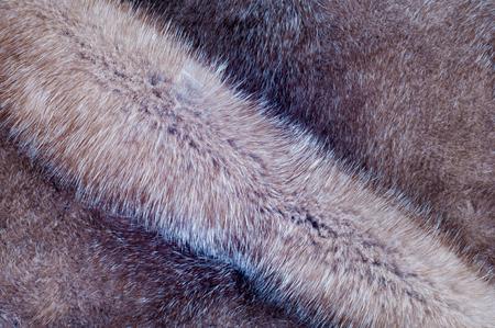 visone: Visone pelliccia texture. pelliccia di visone fotografato in studio