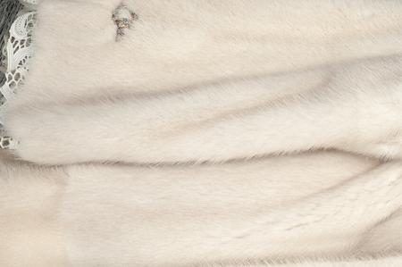 visone: Texture, pelliccia bianca (blu) di visone. Pelliccia di visone. cappotto di visone. studio fotografico. Archivio Fotografico