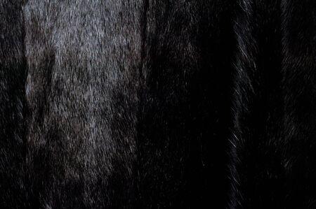 fur coat: Texture, background. Mink fur. Womens mink fur coat Stock Photo