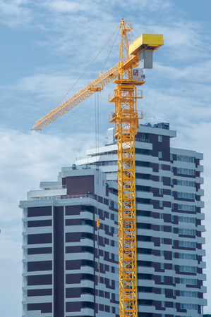 Construction of houses. Tower cranes