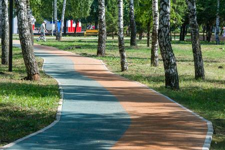 hedge: Pavement in the birch forest. sidewalk,  footpath, causeway, footway, sideway
