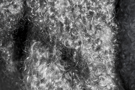 mohair: texture, background. The fur of the Angora goat. a goat, of a long-haired breed.