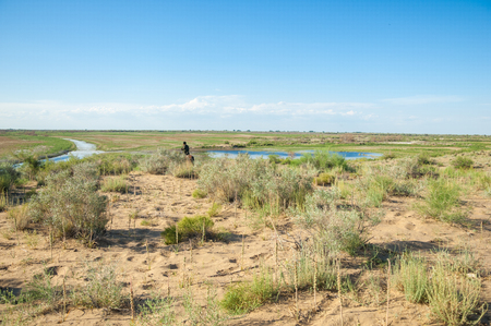 steppe, prairie, veld, veldt. The delta of the Ili River in Kazakhstan. Summer time