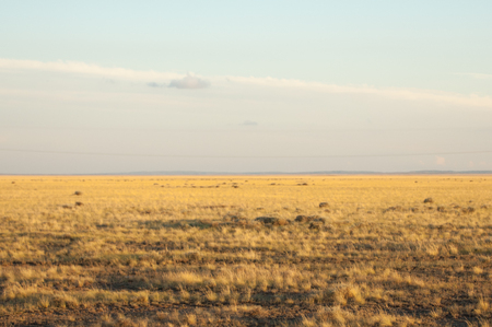 Prairie. and Larga Open AREA of-the grassland,