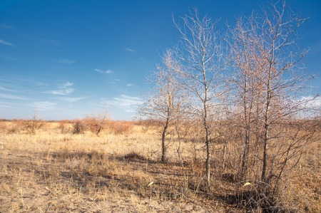 palate: Steppe in the late autumn Stock Photo
