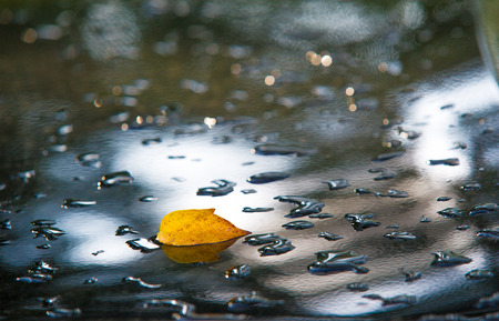 precipitaci�n: pastel. Texture background. raindrops on paintwork. Precipitation in the form of water droplets.