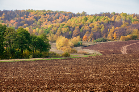 Autumn, the road is unpaved, freshly plowed field, a hill covered with beautiful autumn trees Stock Photo