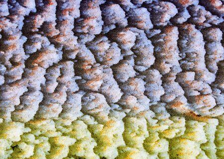 precipitación: Textura, fondo, patrón. Nieve. La precipitación en forma de copos blancos, representa cristales de hielo y masa sólida de estos depósitos que cubren el suelo en el invierno.