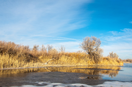 Winter landscape. The water in the river mist from the cold. sand beach is covered with ice. Ili River in the winter. Kazakhstan Stock Photo