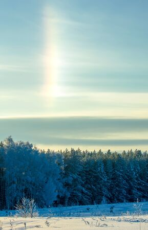 Winter landscape. Frost frost on the trees. Mist evaporation of water. Blue sky. Sunny day. Opaque air saturated with water vapor, filled with bright light of the sun