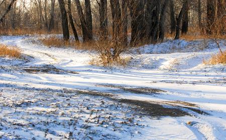 precipitación: Paisaje de otoño. Primera nevada. La precipitación en forma de copos blancos, representa cristales de hielo,
