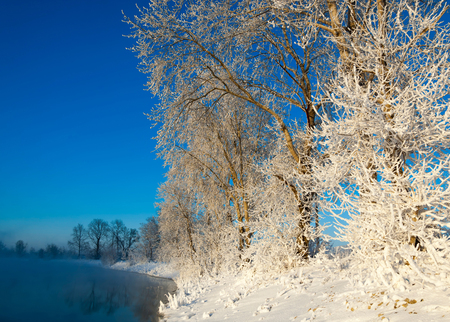 Winter landscape. Trees and bushes with hoarfrost. The water in the river floating mist. cold season. a grayish-white crystalline deposit of frozen water vapor formed in clear still weather on vegetation