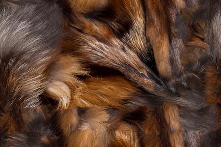visone: Trama, sfondo, senza motivo. Ciò è utile per i progettisti. Fox pelliccia animale. mammiferi carnivori della famiglia. cane con la coda lunga soffice e la sua pelliccia.