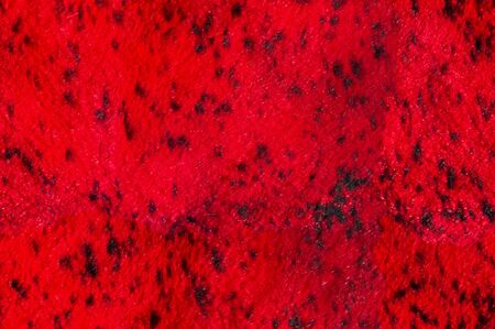 Texture, background, seamless pattern. This is useful for designers. red skin of the animal. Previous animal leather with fur