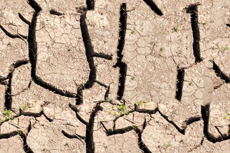 drought: Texture, background, seamless pattern. This is useful for designers. a crack in the ground, drought, sun. absence of water. Slit narrow groove on the surface.