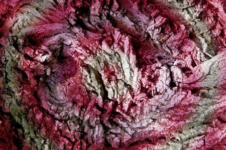 Textur, Hintergrund, Muster. Rinde des Baumes. Draußen, über dem Holz, Stämmen, Stämmen und Wurzeln von Gehölzen.
