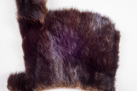 Texture, background. Mink fur. Waste production. Small patches of mink