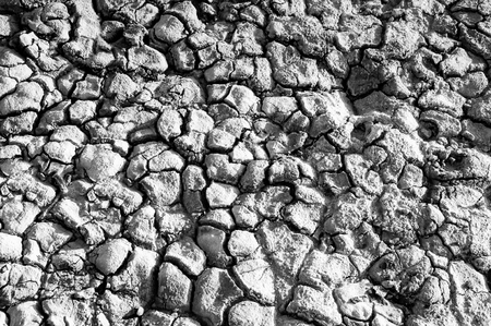 waterless: Texture of the salt of the earth. Drought and bright sun created cracks in the ground Stock Photo