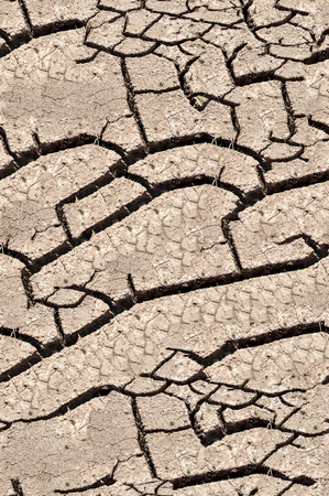 Texture, background, seamless pattern. This is useful for designers. a crack in the ground, drought, sun. absence of water. Slit narrow groove on the surface.