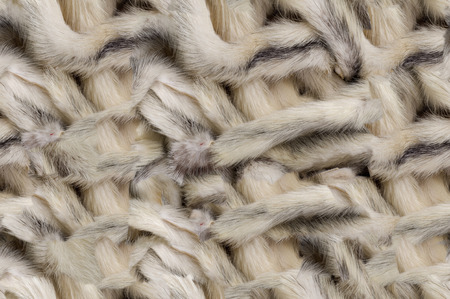 animal hair: Texture, background, seamless pattern. This is useful for designers. Mink fur animal. Fur predatory small animal of the family. martens brown with white shiny hair.