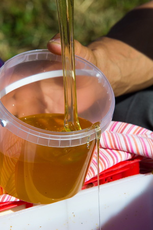 drizzler: Honey poured beekeeper for packages. a sweet, sticky, yellowish-brown fluid made by bees and other insects from nectar collected from flowers.