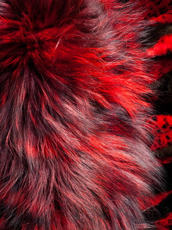 texture. background. mink fur, painted in red color Stock Photo