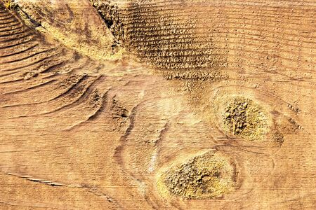 wood panel: Texture of old wood structure. Stock Photo