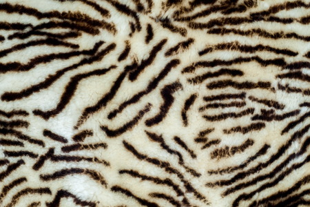 rug texture: Background, Texture. sheepskin, lambskin, sheep, budge. a sheeps skin with the wool on, especially when made into a garment or rug.