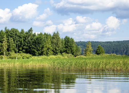 groundwater: Summer clouds river reeds trees. a large natural stream of water flowing in a channel to the sea, a lake, or another such stream.