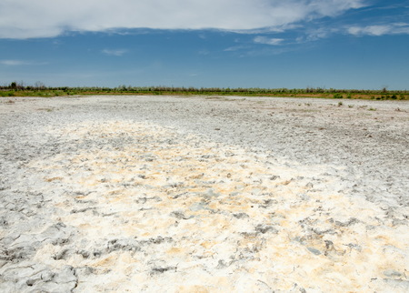 veldt: Steppe saline soils. saline  salt  in salt.  steppe  prairie  veldt veld. Saline soils of the desert, salt lakes,.  lifeless scorched earth. bare steppe of Kazakhstan