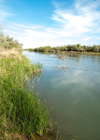Steppe river reeds summer. views in the view of the river. small blue river by a sunny day Stock Photo
