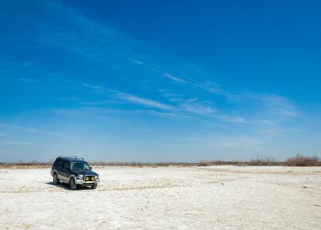 soil erosion: saline, salt-marsh. Etosha badlands. single shrub. Kazakhstan