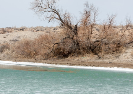 river last ice. Last ice-floe. last needle ice on the Ili River. Central Asia, the steppes of Kazakhstan