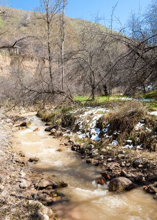 mountain river. mountain river flowing muddy water