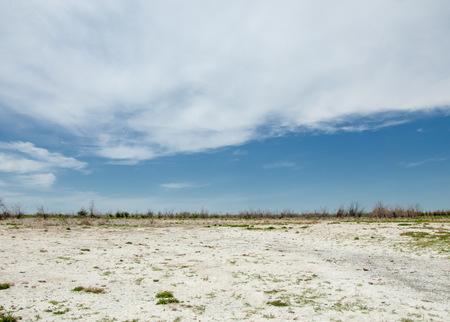 salinity: Steppe saline soils. saline  salt  in salt.  steppe  prairie  veldt veld. Saline soils of the desert, salt lakes,.  lifeless scorched earth. bare steppe of Kazakhstan