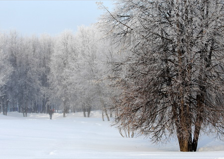 snowcovered: winter, winter-tide, winter-time,  hibernate, he coldest season of the year, in the northern hemisphere from December to February and in the southern hemisphere from June to August.