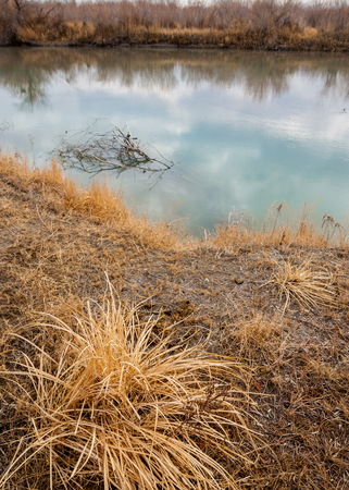 river in spring steppe. riverbank overgrown with reeds. water is pure emerald Stock Photo
