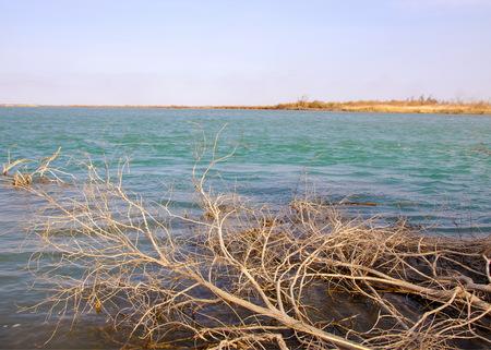 river spring. spring river in Central Asia. Kazakhstan steppe river Semirechye. Stock Photo