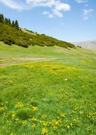 plateau: mountain, mount, hill. Kazakhstan. Tien Shan. Assy plateau