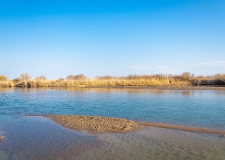 river in spring steppe. riverbank overgrown with reeds. water is pure emerald 版權商用圖片
