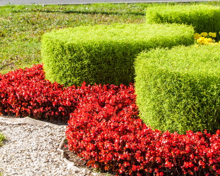 Urban beds. Landscape design in urban flowerbeds. Practical, aesthetic, gardening, as well as components of environmental sustainability including landscape design deserves. Stock Photo