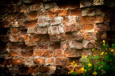 Texture, background, pattern. Picturesque old ruined brick wall.