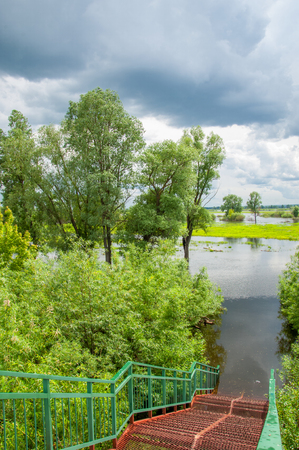 Flood. Natural disaster - the flooding of the land with water, which originated from the coast. Trees of bushes are in the water. Receipt of insurance benefits Stock Photo