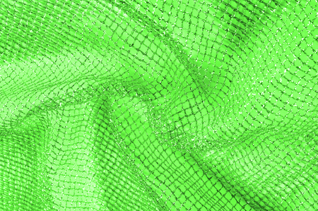 a green silver mesh fabric, with a woven metallic thread. Enjoy the eyes of this mesmerizing metal flower net. Bright and pretty clean, this acetate mesh will tell everyone.