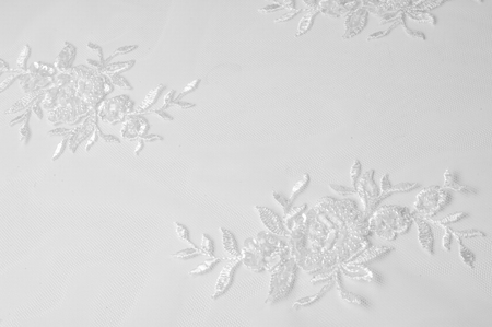 texture Tulle is white Growing in a bold floral design do not miss the chance to purchase this white on white floral embroidered tulle Large floral vignettes grow  columns over a clean soft tulle Stockfoto