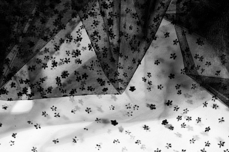 lace fabric. Black lace small on white background. Add a subtle touch to your collection with this Black Flower Chantilly Lace. Light and airy lace. Use your delicate design work.  Banco de Imagens