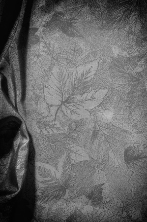 Texture, background, pattern. cloth silk black white. Look at the world through a quartz crystal with this black and white prismatic silk chiffon. Ultra soft silk woven pattern is a pattern