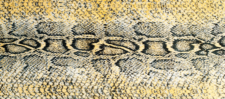 Silk fabric texture, background, painted snake skin